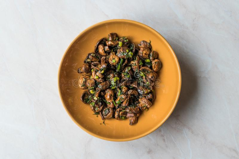 Homemade Cultivated Mushroom Salad with Dill and Green Onions. stock photography