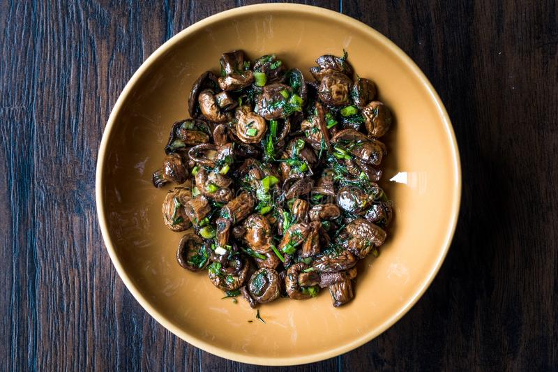 Homemade Cultivated Mushroom Salad with Dill and Green Onions. royalty free stock image