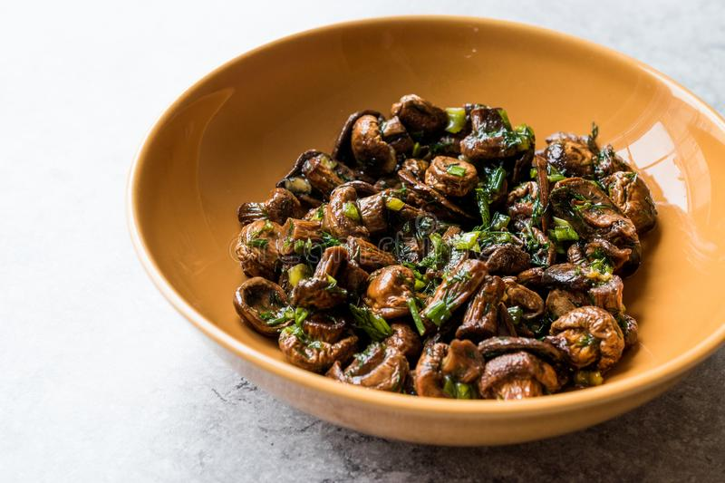 Homemade Cultivated Mushroom Salad with Dill and Green Onions. royalty free stock photo