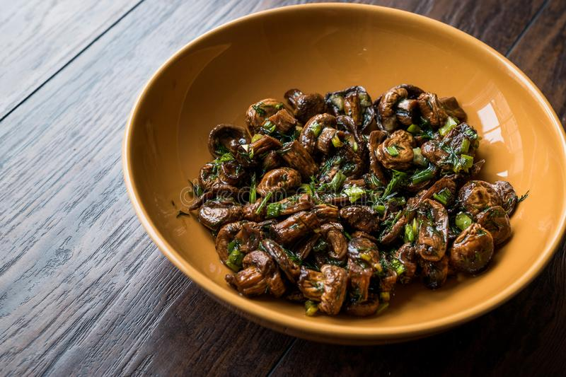 Homemade Cultivated Mushroom Salad with Dill and Green Onions. stock photo
