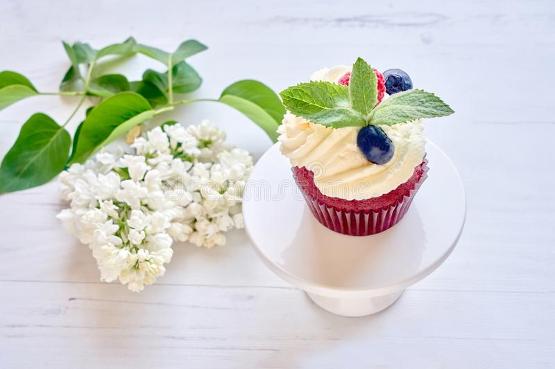 Homemade cupcake decorated with white cream and berries on cakes stock photography