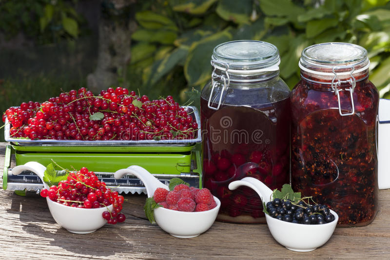 Homemade currant and cherry liqueur royalty free stock image