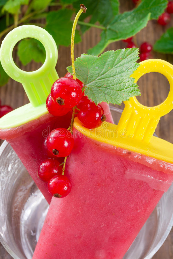 Homemade currant water ice royalty free stock photo