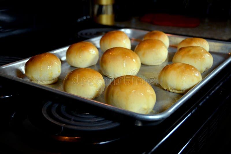 Homemade Dinner Rolls stock photos
