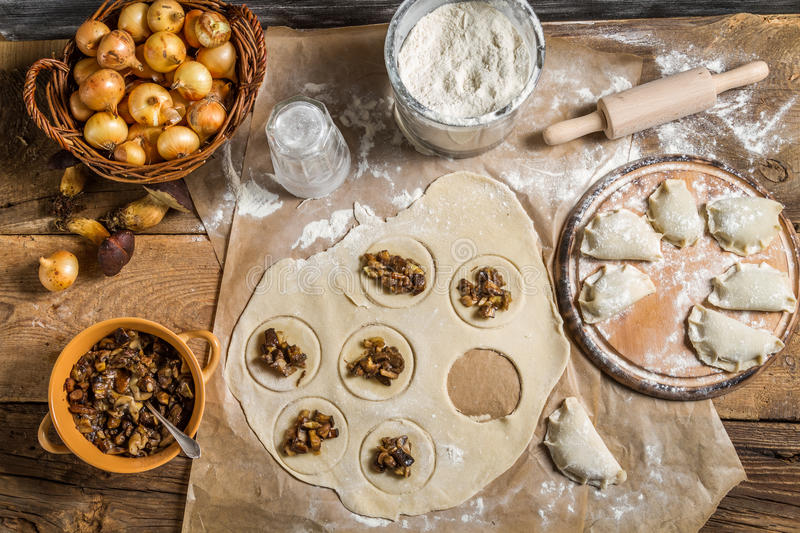 Homemade dumplings with onion and wild mushrooms royalty free stock photos