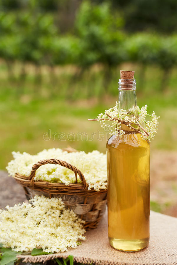 Homemade elderflower syrup in a bottle. And basket with flowers of elderflowers royalty free stock images