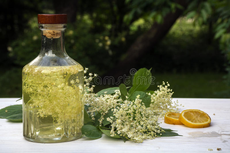 Homemade elderflower syrup in a glass bottle, elderflower umbel. And lemon slices on a white wooden table in the garden, refreshing drink in summer, selective royalty free stock image