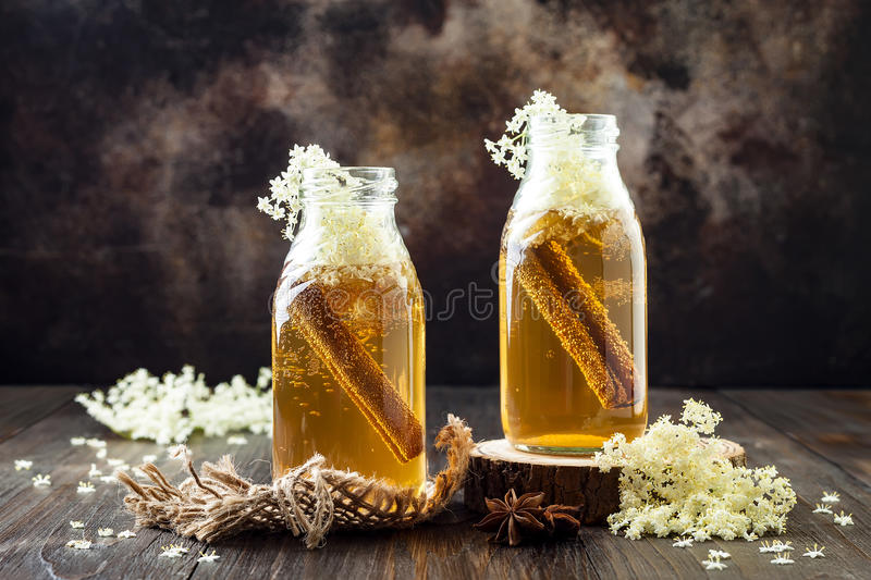 Homemade fermented cinnamon and ginger kombucha tea infused with elderflower. Healthy natural probiotic flavored drink. Copy space royalty free stock photos