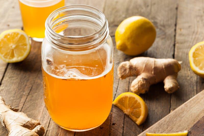 Homemade Fermented Raw Kombucha Tea stock images