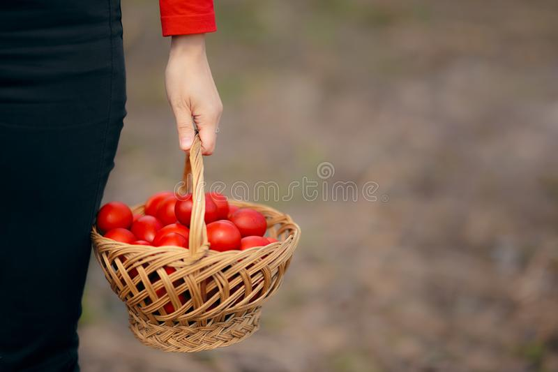Hand Holding Easter Eggs Basket in Egg Hunt Challenge. Homemade food for traditional holiday game stock photo