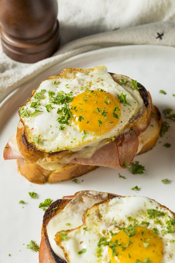 Homemade French Croque Madame Sandwich royalty free stock photos
