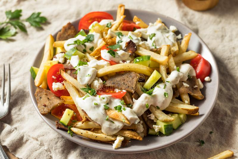 Homemade Greek Gyro Meat French Fries royalty free stock image