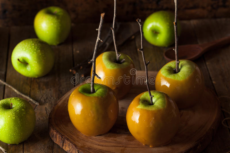 Homemade Green Caramel Apples. On a Stick for Halloween royalty free stock photo