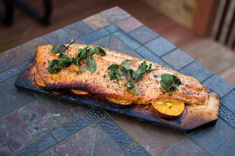 Homemade Grilled Salmon whole filet on a Cedar Plank. A filet of salmon with mint on top laid on wedges of oranges for a subtle hint of sweet citrus, grilled on stock photography