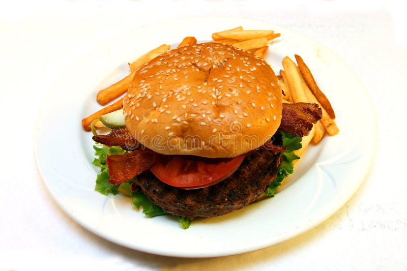 Homemade hamburger. Homemade beef hamburger with fries royalty free stock images