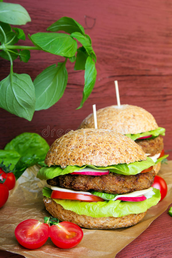 Homemade hamburgers with fresh vegetables. On wooden background stock image