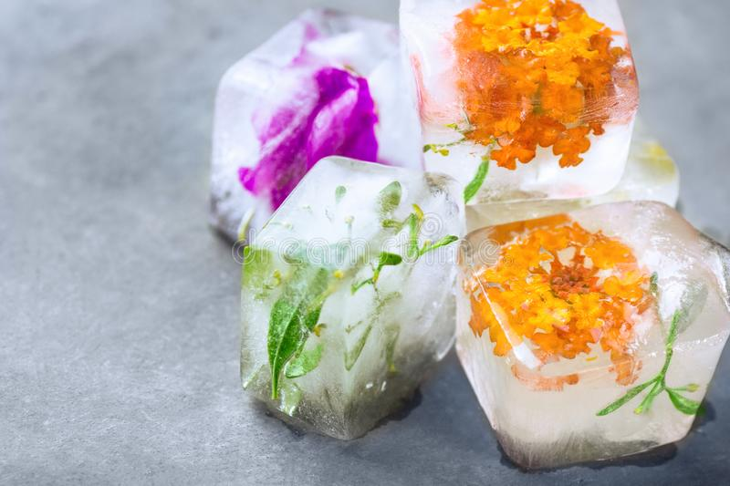Homemade ice cubes with frozen herbs plants flowers. Facial skin care beauty spa anti-aging concept stock images