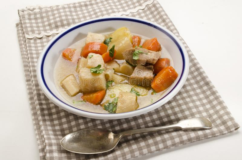 Homemade irish stew in a deep dish with a blue border royalty free stock image