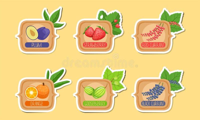 Homemade Jam Labels Set, Plum, Truskawka, Czerwony Porzeczka, Pomarańczowy, Gooseberry, Czarny Naklejka — Ilustracja wektorowa ilustracji