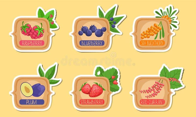 Homemade Jam Labels Set, Raspberry, Blueberry, Sea Buckthorn, Plum, Truskawki, Red Currant Stickers Ilustracja wektorowa royalty ilustracja