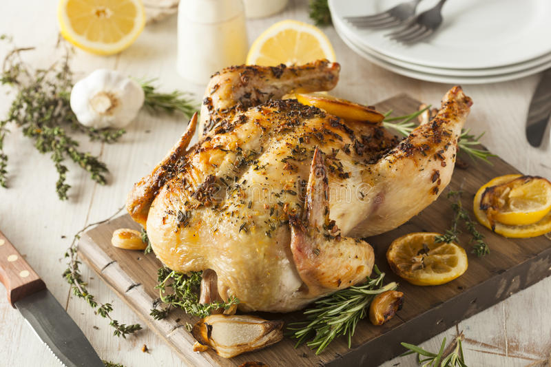 Homemade Lemon and Herb Whole Chicken royalty free stock photo