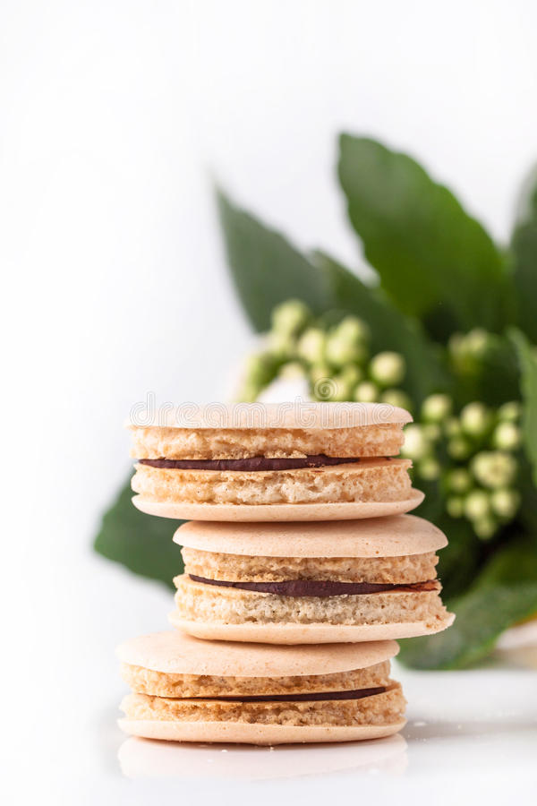 Download Homemade Macaroons With Flowers Stock Image - Image: 28936785