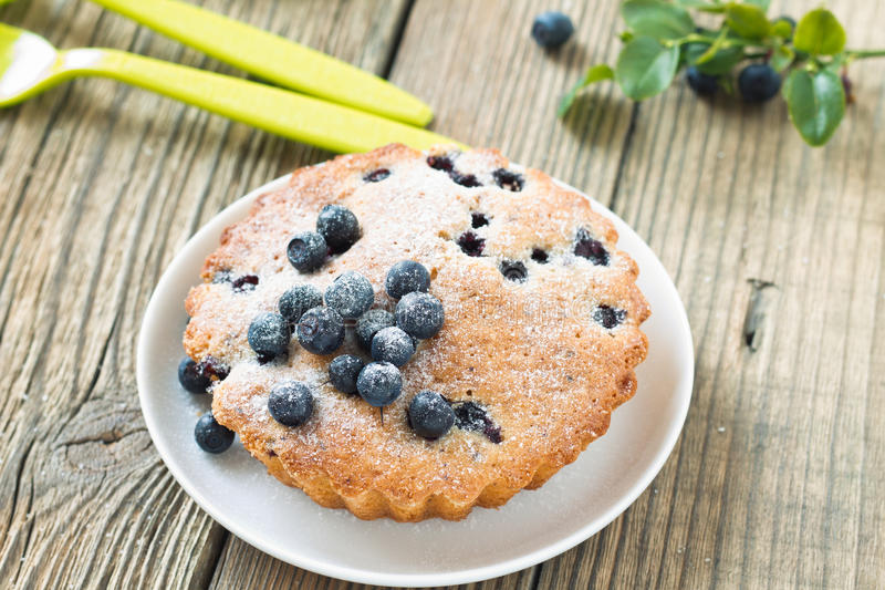 Homemade mini fresh blueberry pies on white plate stock photography
