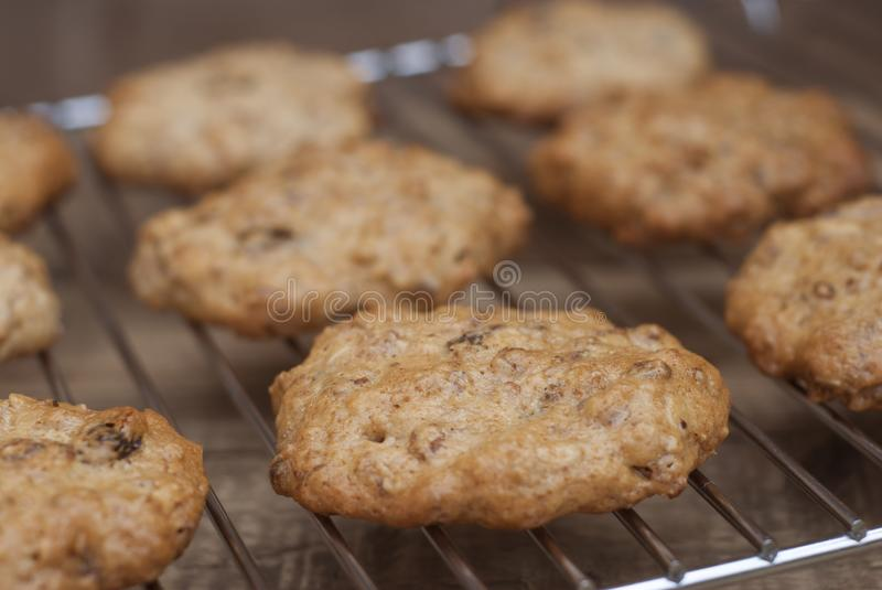 Homemade oatmeal cookies on wooden board. Sweet dessert snack, Healthy Food. Copy space. Banner. stock images
