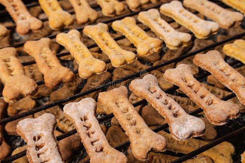 Homemade oatmeal dog treats with carrots on black. Background royalty free stock image