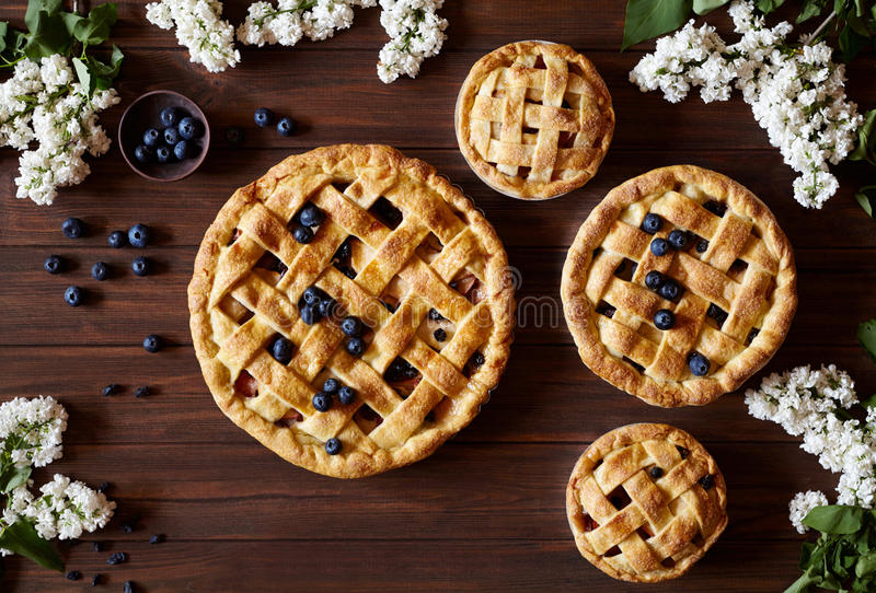 Homemade pastry apple pies bakery products on dark wooden kitchen table with raisins, cinnamon, blueberry and apples. Traditional dessert on Independence Day stock photography