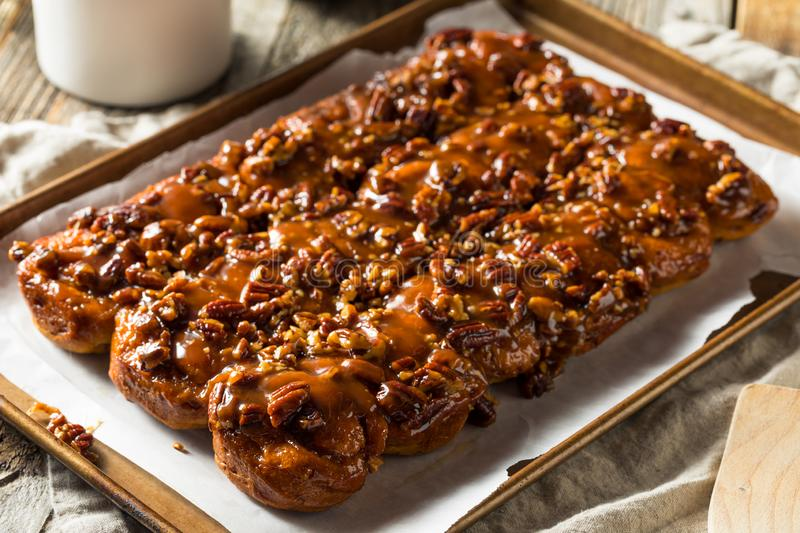 Homemade Pecan Schnecken Sticky Buns. Ready to Eat royalty free stock photo