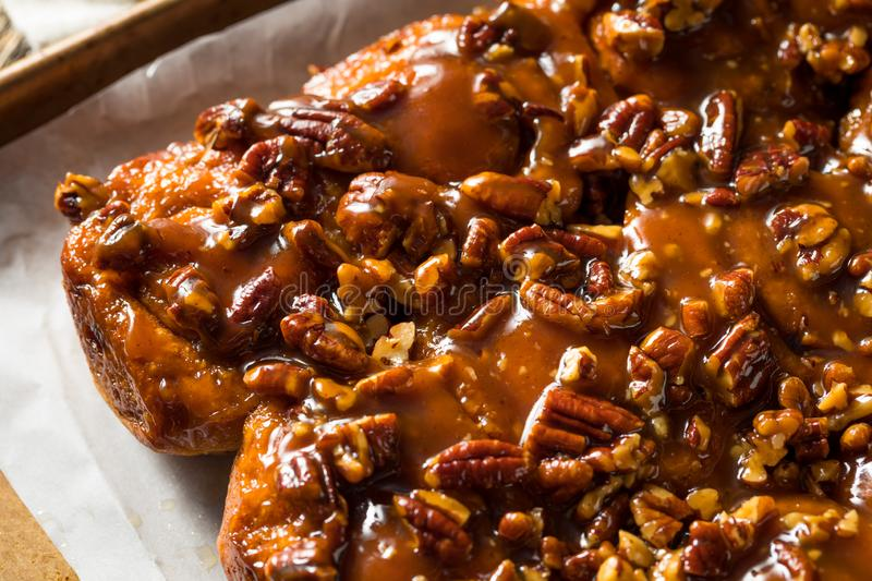 Homemade Pecan Schnecken Sticky Buns. Ready to Eat royalty free stock photography