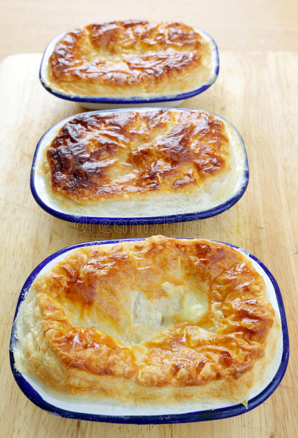 Download Homemade pies vertical stock image. Image of baking, enamel - 24616381