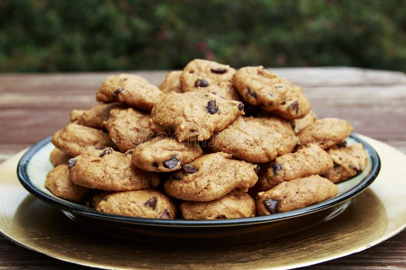 Homemade Pumpkin Chocolate Chip Cookies served on a plate.  stock photos