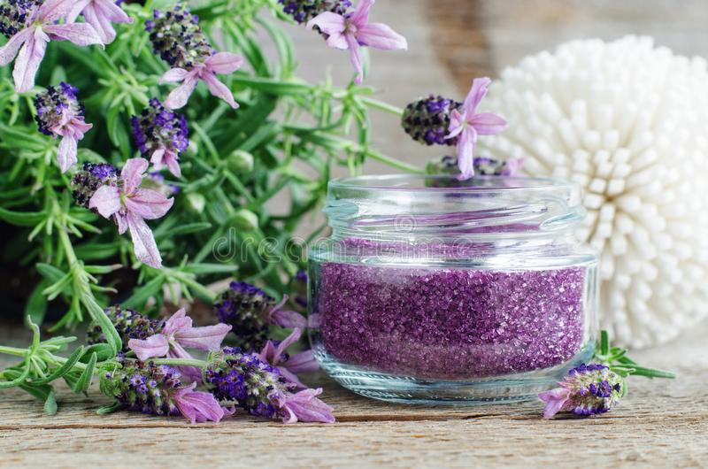 Homemade purple exfoliating scrub foot soak or bath salt with essential lavender oil. Topped lavender flowers close up. Natural stock photos