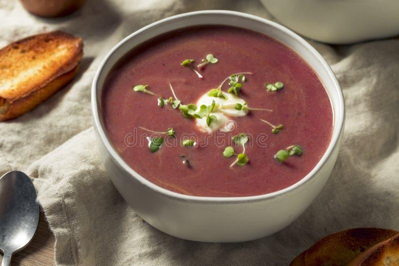 Homemade Purple Sweet Potato Soup stock photos