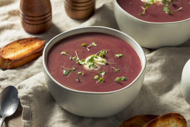 Homemade Purple Sweet Potato Soup royalty free stock image