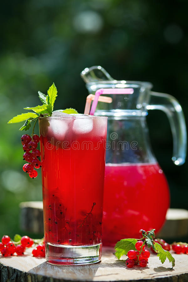 Homemade redcurrant juice in a glass and jug with mint ice in summer garden. Glass and jug of redcurrant juice with mint and ice in a summer garden stock photos