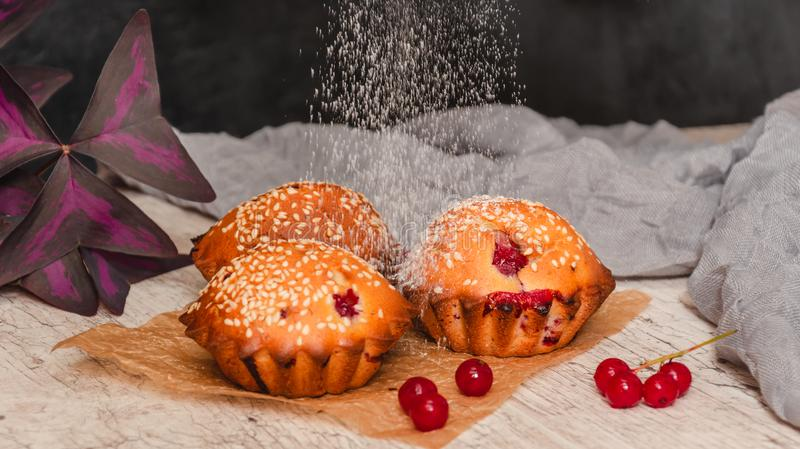 Homemade redcurrant muffins with sesame seeds. Falling icing sugar on fresh baked muffins. Closeup stock photography