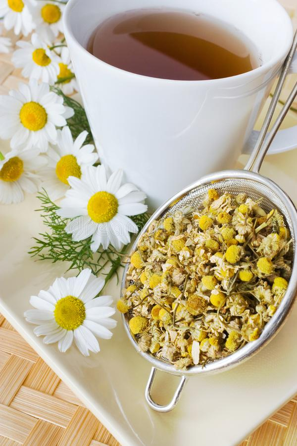 Homemade remedy - herbal camomile tea matricaria chamomilla -. Health care and medical treatment stock image