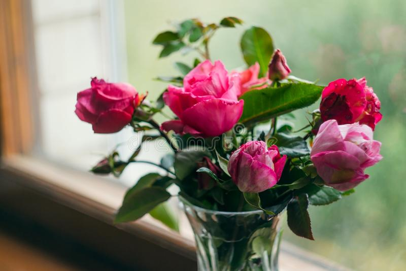 Homemade roses. Bouquet in a crystal vase on a wooden window. The concept of quiet and cozy village life, gardening and environmen. Tal friendliness stock photo
