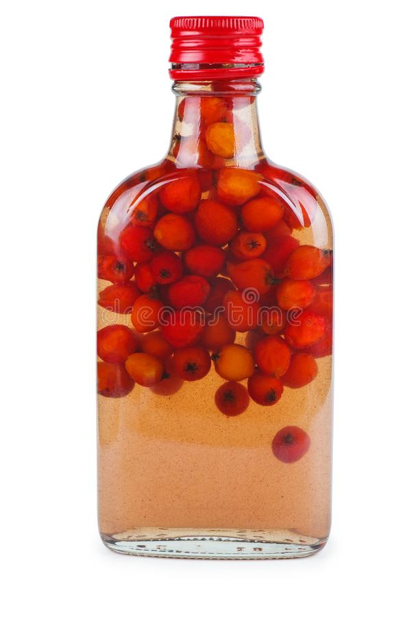 Homemade rowan liqueur. Isolated on white background royalty free stock images