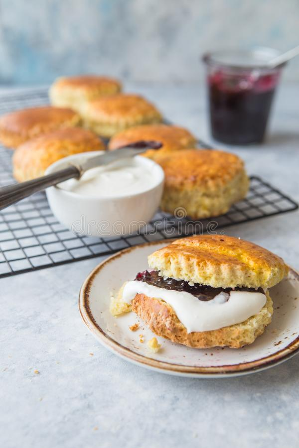 Homemade scones serve with homemade currant jam,clotted cream . Scones is English pastry for afternoon. Sweet Homemade raisin scones serve with homemade royalty free stock image
