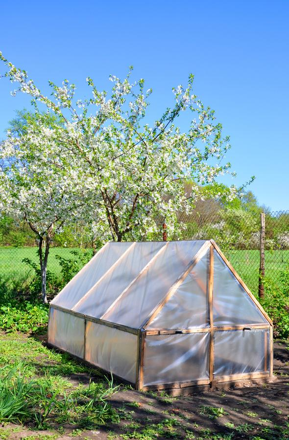Homemade small greenhouse on the background of spring vegetation stock images