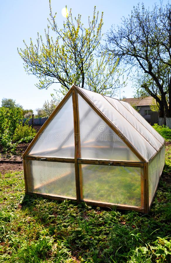 Homemade small greenhouse on the background of spring vegetation stock photos