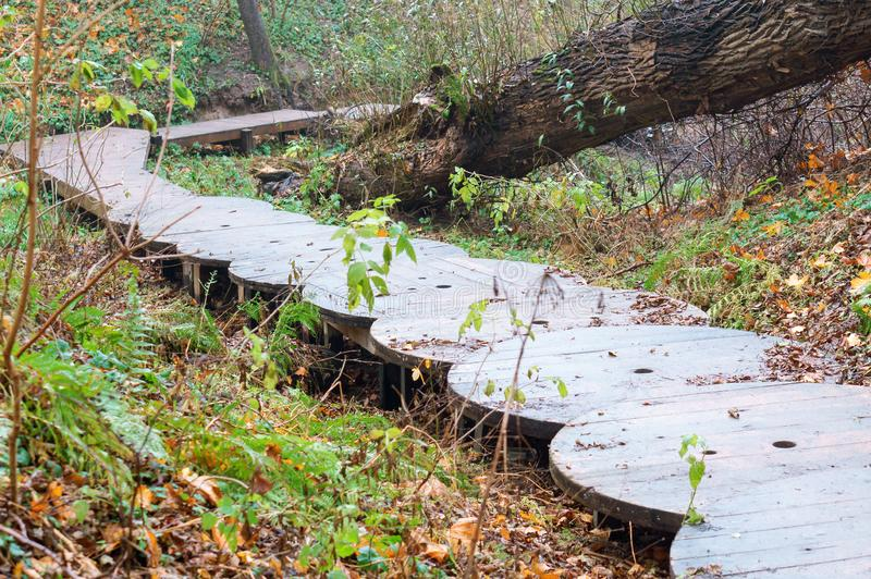 Homemade staircase in the forest, stairs of wooden circles. Stairs of wooden circles, homemade staircase in the forest royalty free stock image