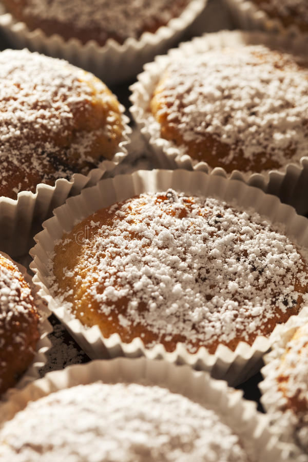Download Homemade sugar muffins stock image. Image of baking, white - 23740361
