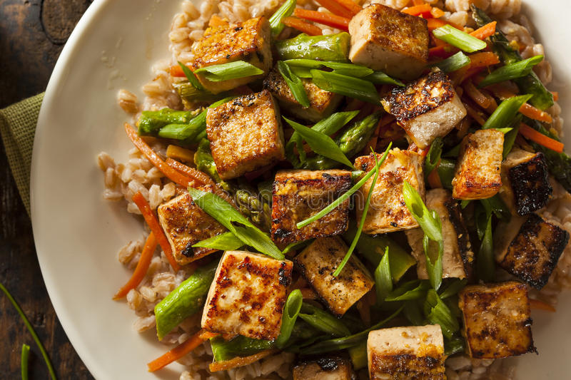 Homemade Tofu Stir Fry. With Vegetables and Rice royalty free stock images