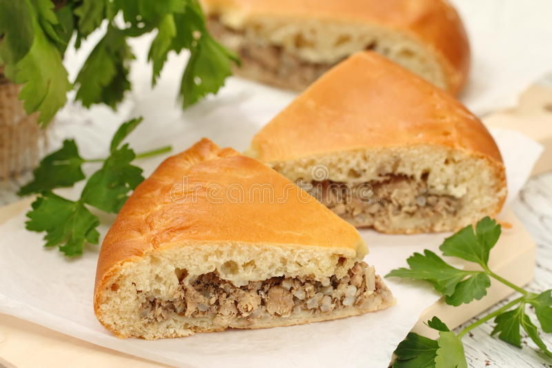 Homemade traditional russian pie with meat and rice royalty free stock photography