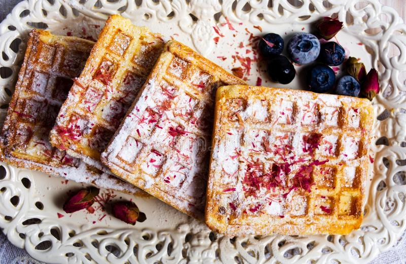 Homemade waffles with blueberry and rose tea royalty free stock photos